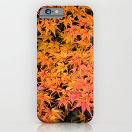 Japanese Maple Leaves iPhone Case