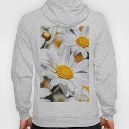 Daisy Flowers 0136 Hoody