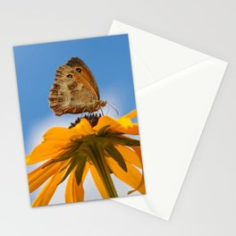 Butterfly on a yellow flower Stationery Cards