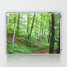 The Emerald Forest Laptop & iPad Skin