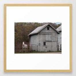 Farm with Barn and Horse Framed Art Print