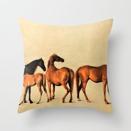Classical Master Piece Circa 1762  Rockingham Mares and Foals by George Stubbs Throw Pillow