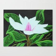 Magnolia /close up Canvas Print