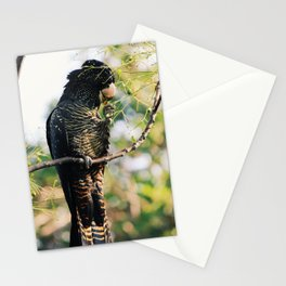Red-Tailed Black Cockatoo in the Swan Valley Stationery Cards