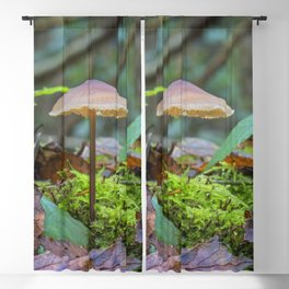 Slender Fungi Blackout Curtain
