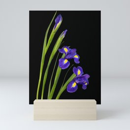 Spring Iris Mini Art Print