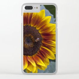Red Sunflower with Bee Clear iPhone Case