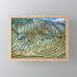 Rice Field Landscape Framed Mini Art Print