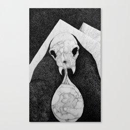 Rock Salt Gazing Canvas Print