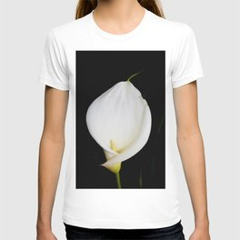 Calla Isolated T-shirt