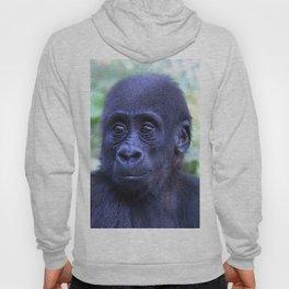 CArt Gorilla Baby Hoody