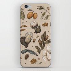 Georgia Nature Walks iPhone & iPod Skin