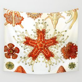 Common Starfish Drawings Wall Tapestry