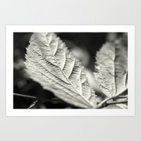 Leaves if you must. Art Print
