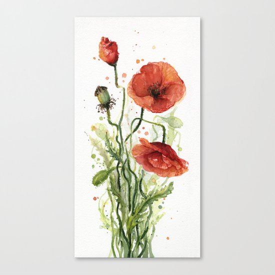 Red Poppies Watercolor Flower Floral Art Canvas Print