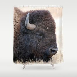 Buffalo Bison Up Close Shower Curtain
