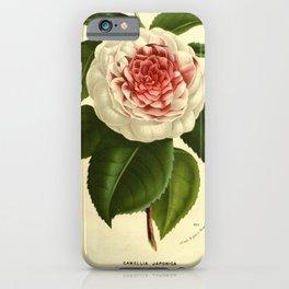 Flower camellia japonica giardino santarelli9 iPhone Case