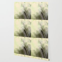 Asparagus Fern Wallpaper