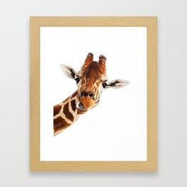 Giraffe Portrait // Wild Animal Cute Zoo Safari Madagascar Wildlife Nursery Decor Ideas Framed Art Print