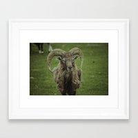 ram Framed Art Prints featuring Ram by Jeremy Jon Myers