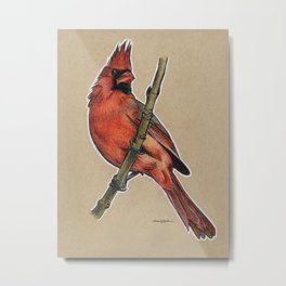 State Bird Series: West Virginia - Northern Cardinal Metal Print