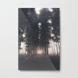 Forests Fog Metal Print
