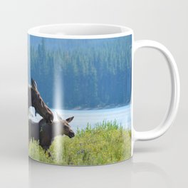 Mother moose & calf at Maligne Lake in Jasper National Park Coffee Mug