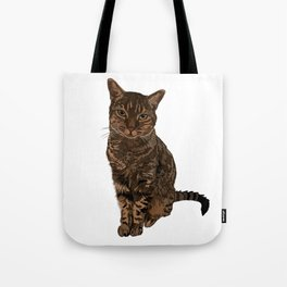 Chazzy the former Toronto Street cat Tote Bag