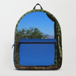 Saguaro Backpack