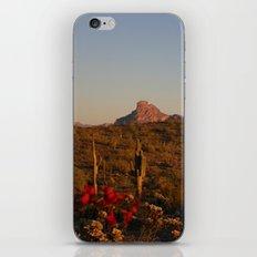 Red Rock iPhone & iPod Skin