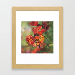 Elle et son jardin Framed Art Print