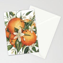Orange Blossoms Stationery Cards