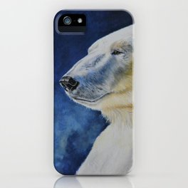 Aurora by Teresa Thompson iPhone Case