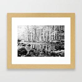 Creek. Framed Art Print