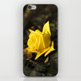 Qu'ils mangent de la brioche XII - Yellow Rose iPhone Skin