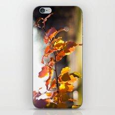 Embers III iPhone & iPod Skin