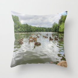 Beauty of the Lake Throw Pillow