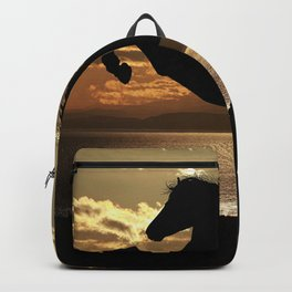 freedom Backpack