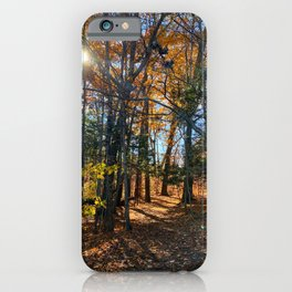 Vaughan Woods Foliage (1) iPhone Case