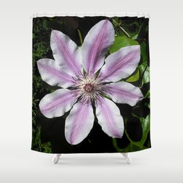 Clematis Nellie Moser Shower Curtain