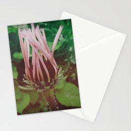 Updo Stationery Cards