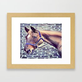 Brown Horse with Harness Framed Art Print