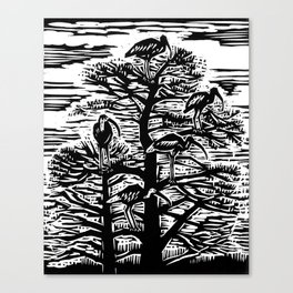 Five Ibis Canvas Print