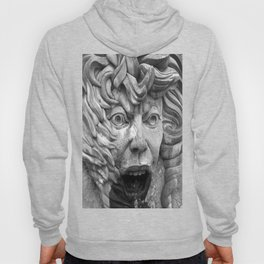 The Face of Fire Hoody