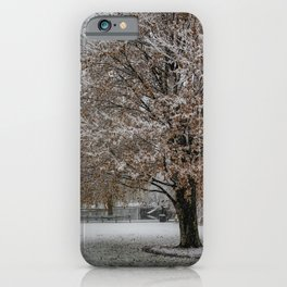Public Garden snow iPhone Case