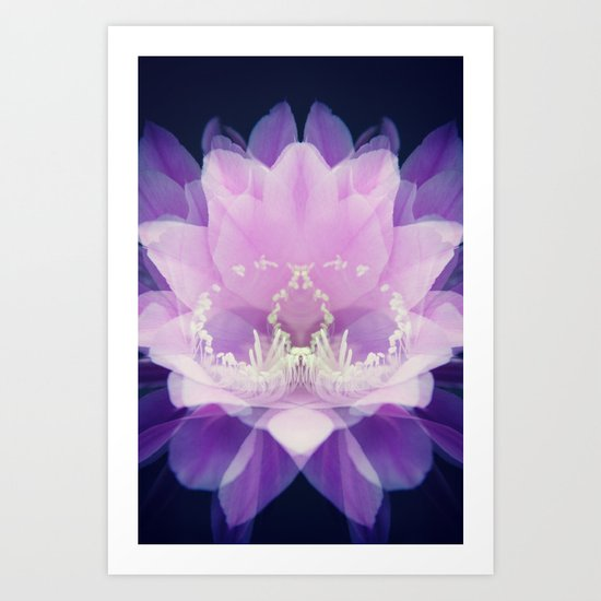 Cactus Flower Pink Art Print