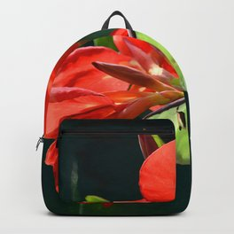 """Anticipation Of The Night"" - Luna moth Painting Backpack"