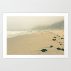Point Reyes On A Sunday Art Print