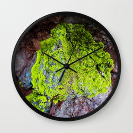 Clinging to Stone (Lichen) Wall Clock