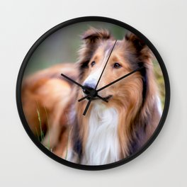 He #looks #like #Lässie this #beautiful #American #collie Wall Clock